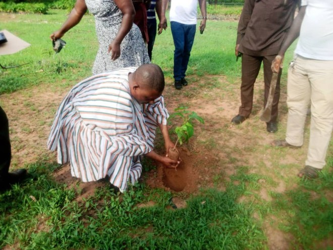 Government has an agenda to plant trees to ensure a green environment - Abu Jinapor