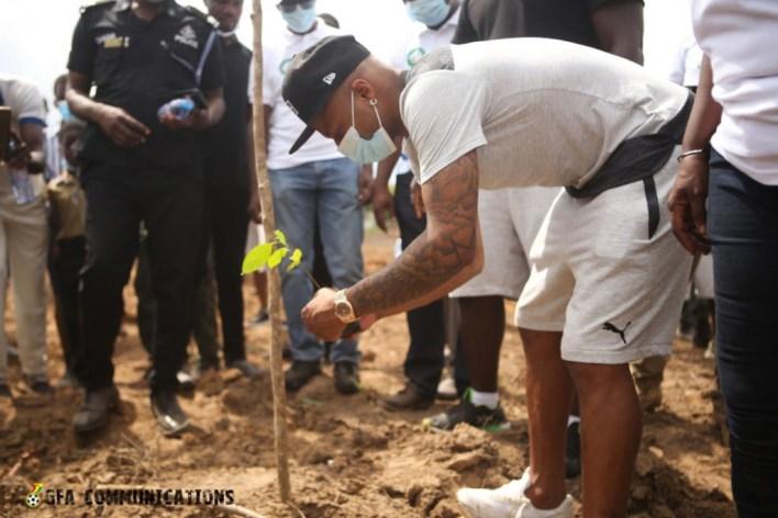 Photos: Ghana plants 5 million trees today