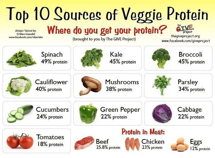 Where's the Protein?