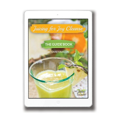 juicing-for-joy-guidebook-cover