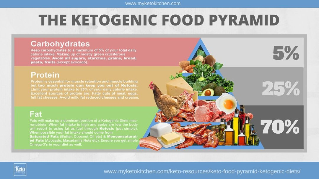 Keto Food Pyramid Ketogenic Diet