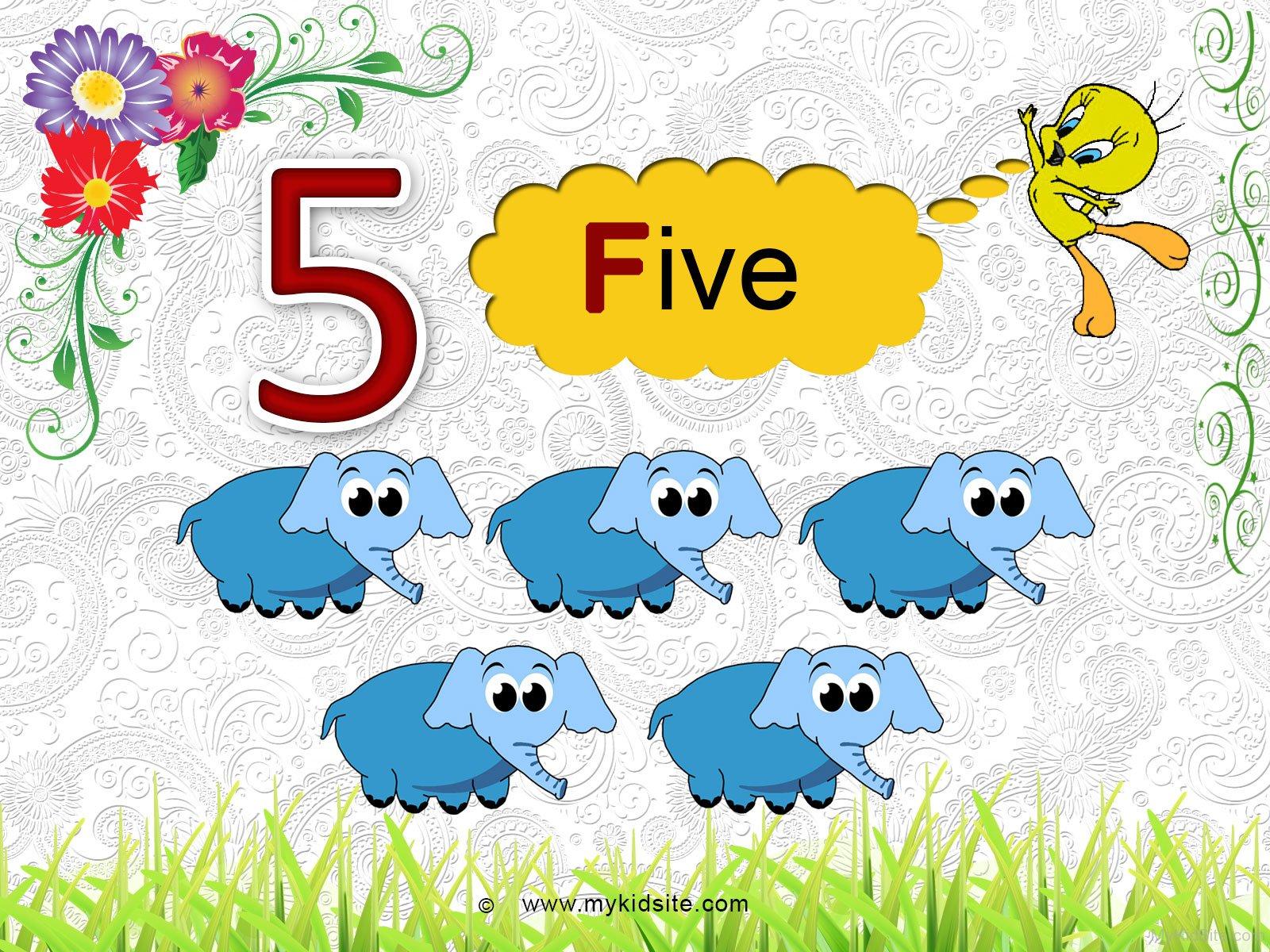 Number Worksheet For 5