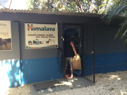 Safari Animal Clinic, Costa Rica