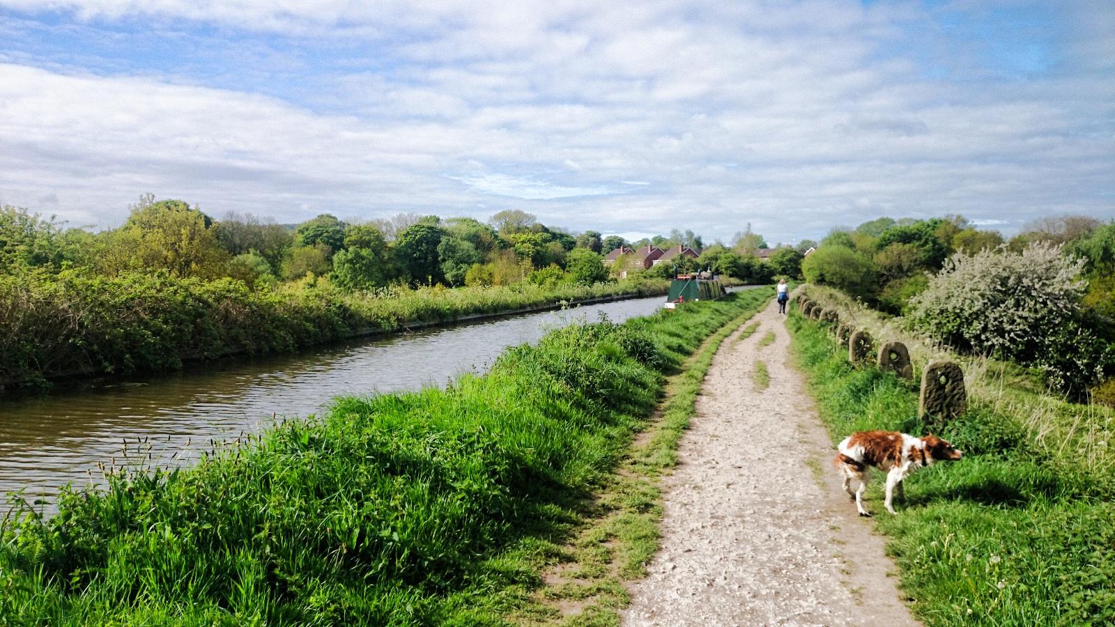 Photos of Congleton: Canal