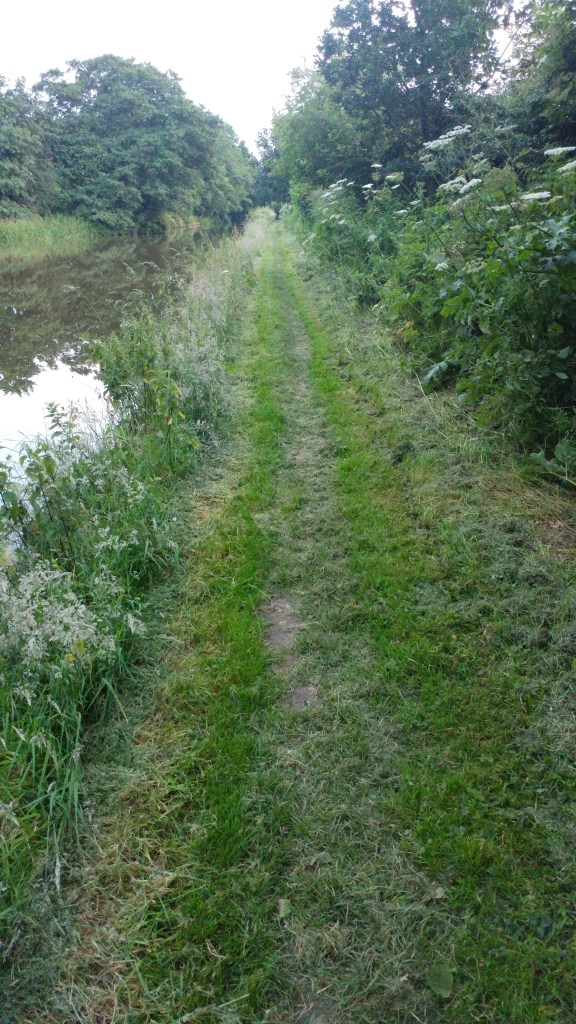 Freshly mown towpath, bliss
