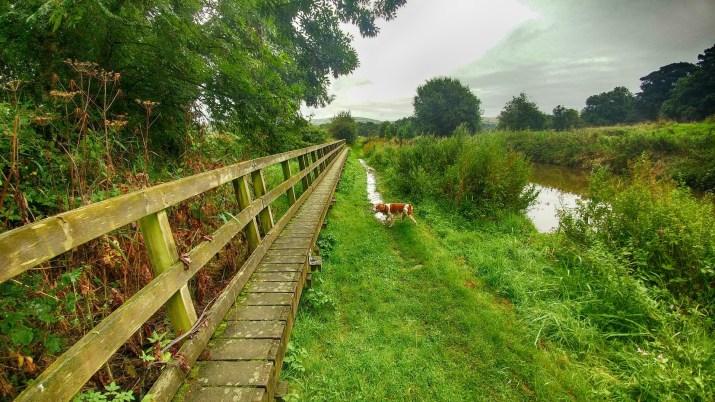 Footbridge over the Spillway below Bosley locks