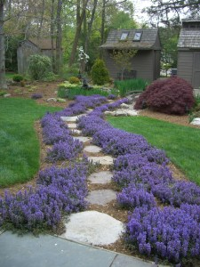 Natrual stone makes a beautiful path