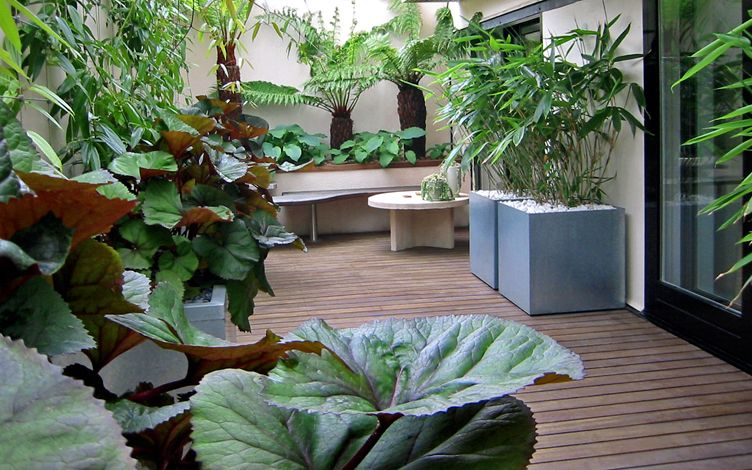 Roof Terrace Garden Projects Mylandscapes Modern Rooftop Design
