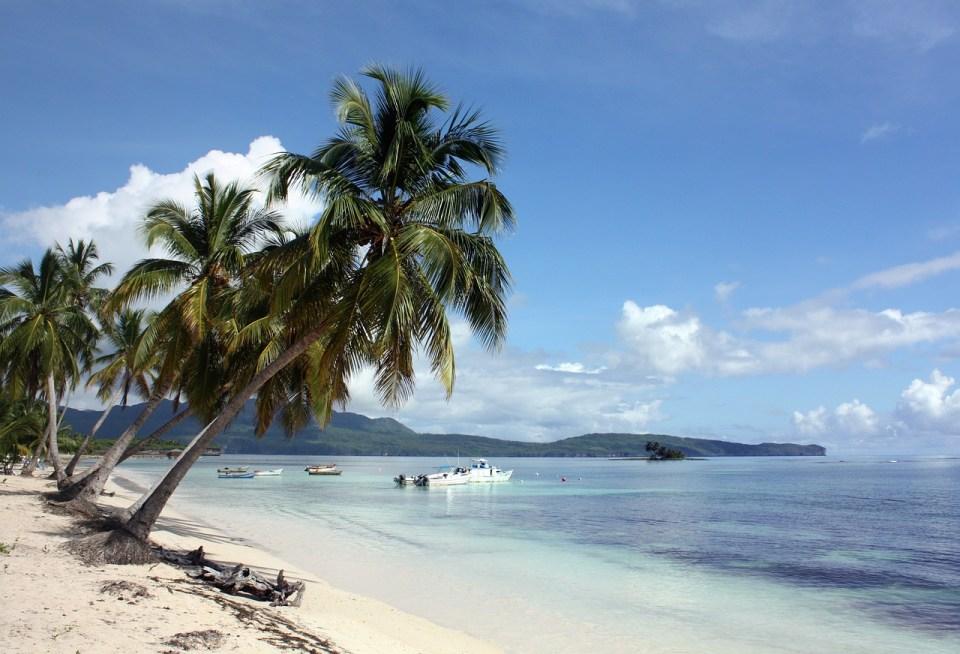 republique dominicaine plage cocotier - ou partir en janvier au soleil