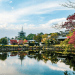 parc de nara japon