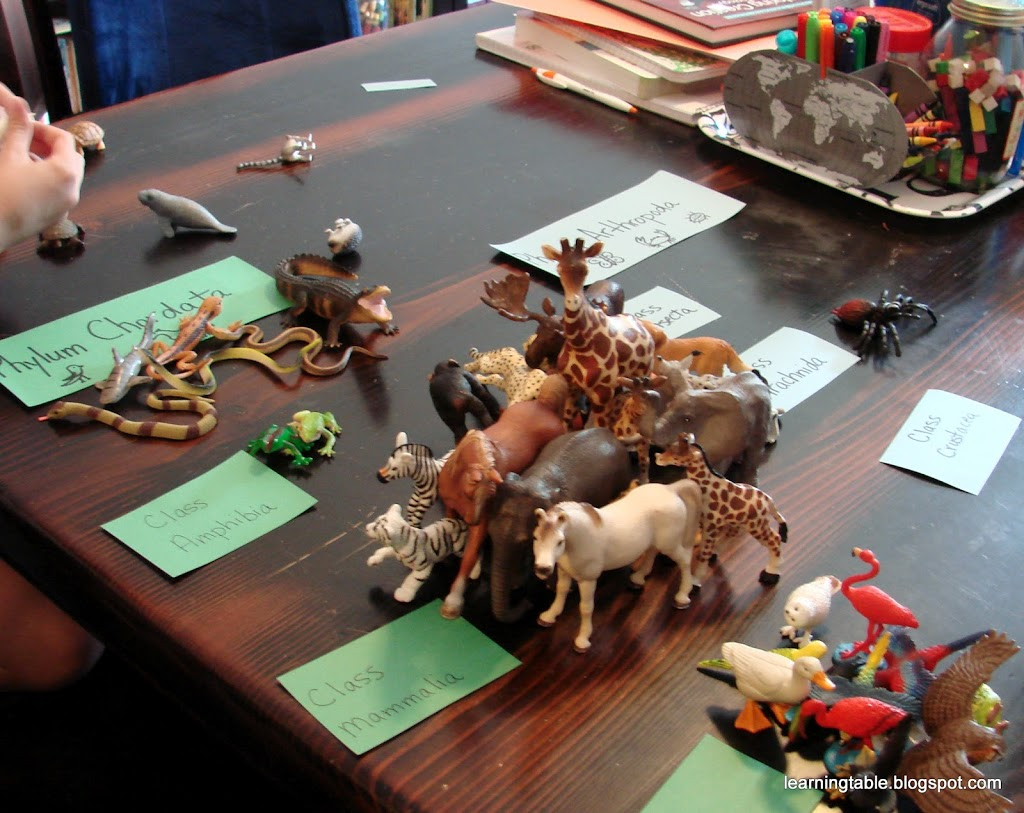 Hands On Science Animal Classification Learning Table