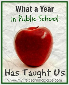 What a Year in Public School has Taught Us
