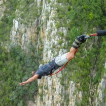 Bungee eagle 1