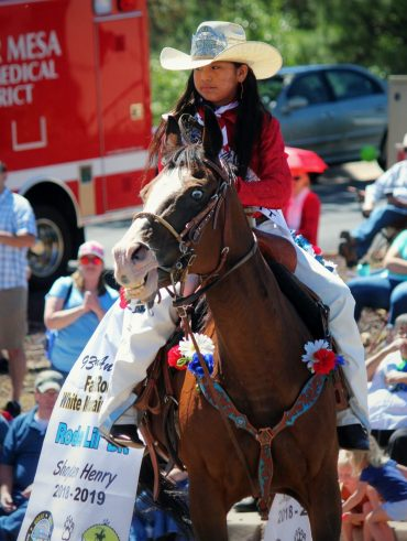 How to get a sponsor for your horse