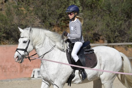 What tack do you need when you're buying your first horse?