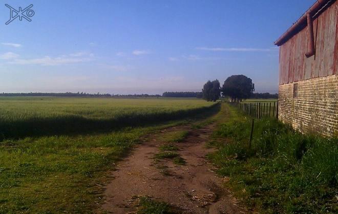 Farmers Area