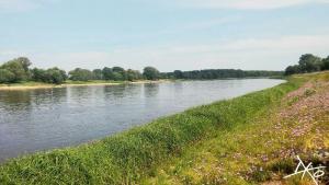 Saale-Elbe-Muendung-Barby-Kanutour