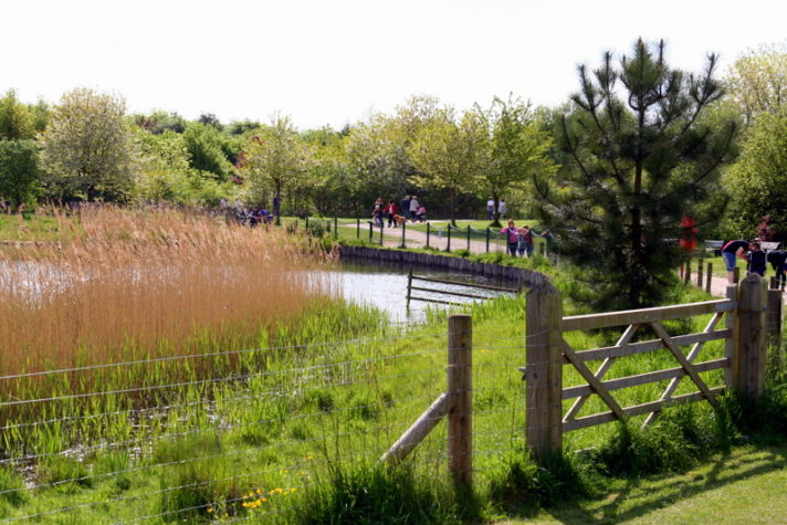 If you want ideas for things to do in the school holidays with kids in Nottingham then look no further than Rushcliffe Country Park for a day trip. Its the biggest park with so much to see and do. A must visit for families in Nottingham