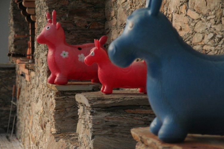 Rubber Donkeys - Pool Toys