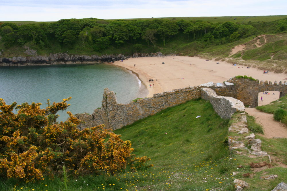 Barafundle Bay, Pembrokeshire. Now owned by the National Trust and listed as the best picnic spot in the UK several years running.