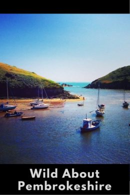 Pembrokeshire, South Wales, is the perfect holiday spot for surfers and families alike, fantastic opportunities for ramblers, nature and art lovers, thrill seekers, foodies and those that just like to relax. Check out my highlights here...