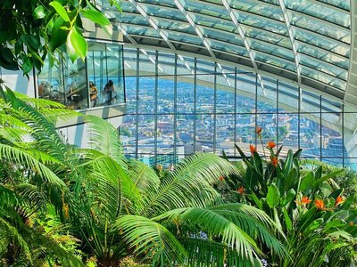 The Sky Garden restaurant on top of the Walkie Talkie building at 20 Fenchurch Street, London
