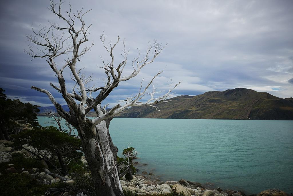 Lago Nordenskjöld W-Trek, Torres Del Paine
