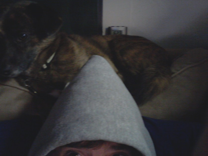 Me in the grey hoodie - My dog wrapped around my head
