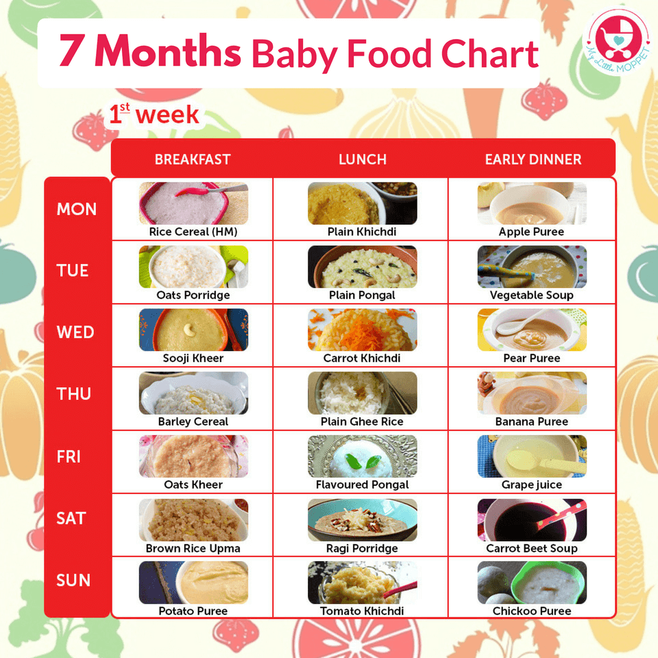 Introducing Food To Babies Order