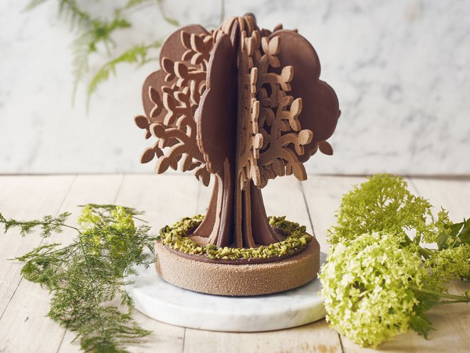 arbre en chocolat