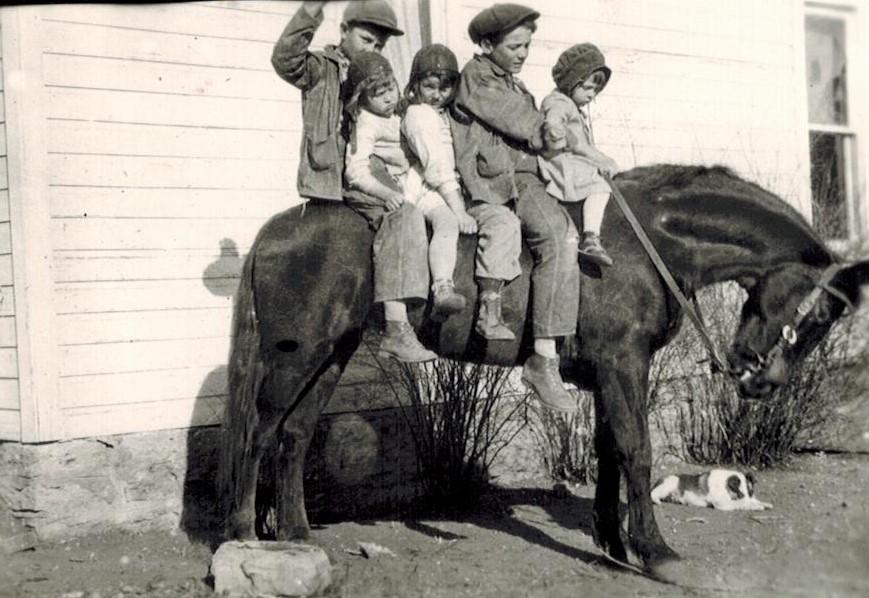 Keller kids on horse