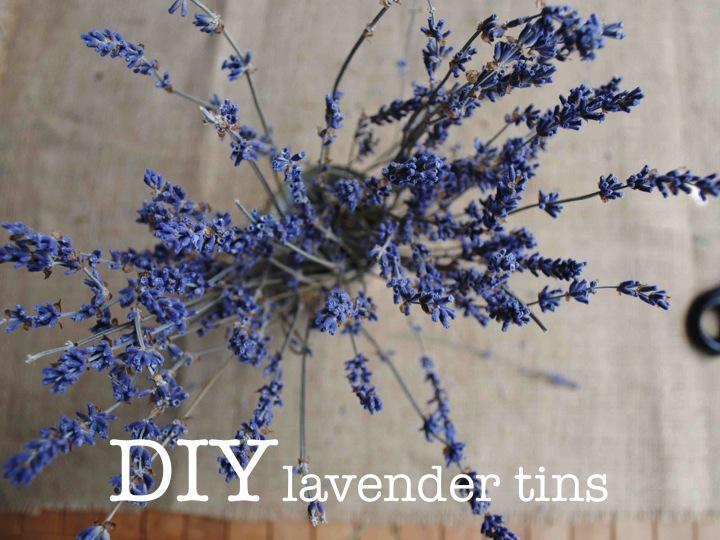 DIY LAVENDER TINS ♥