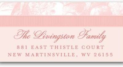 """Chenille Lovely Toile Address Labels"""