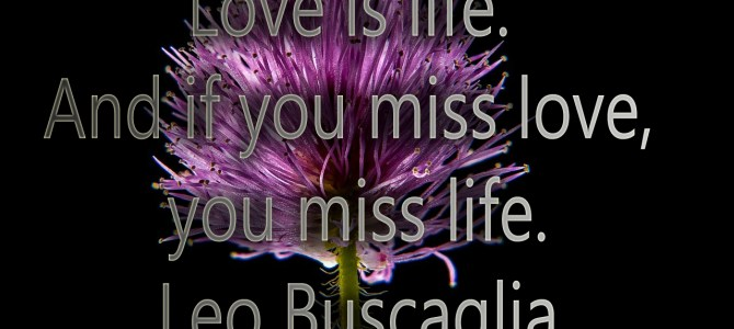 If you miss love, you miss life