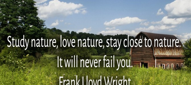 Love nature and stay close to it, i will never fail you