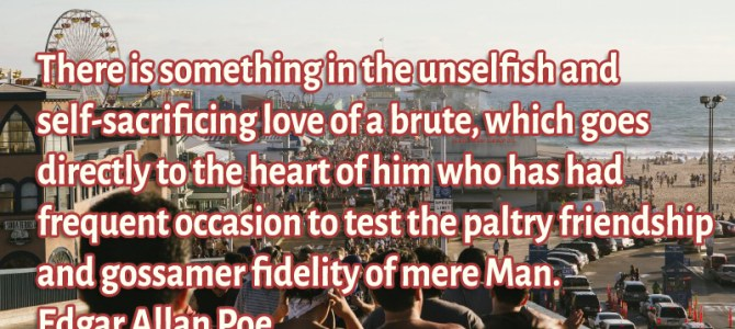There is something in the unselfish and self-sacrificing love of a brute