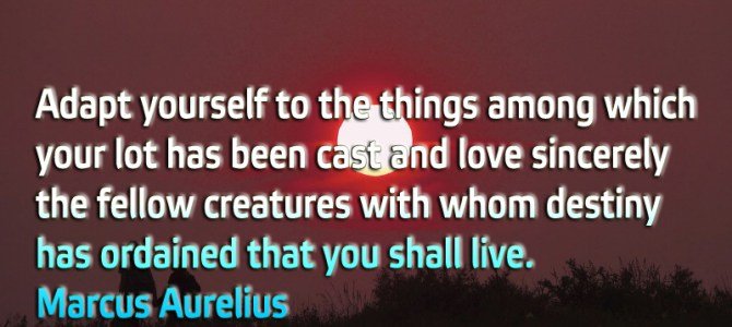 Adapt yourself to the things among which your lot has been cast and love sincerely