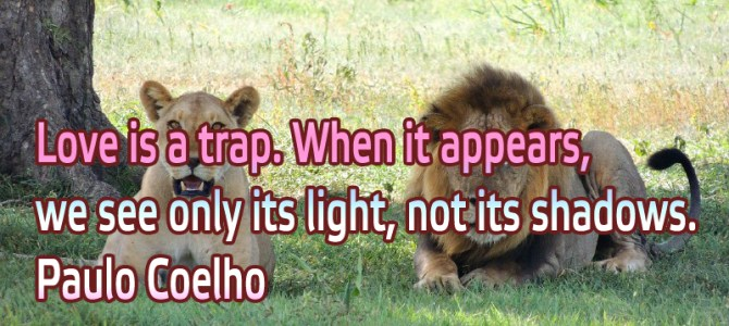 Love is a trap. When it appears, we see only its light, not its shadows