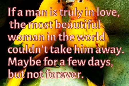 The most beautiful woman can't take away a man that is truly in love