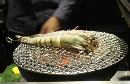 Big Tiger Prawns