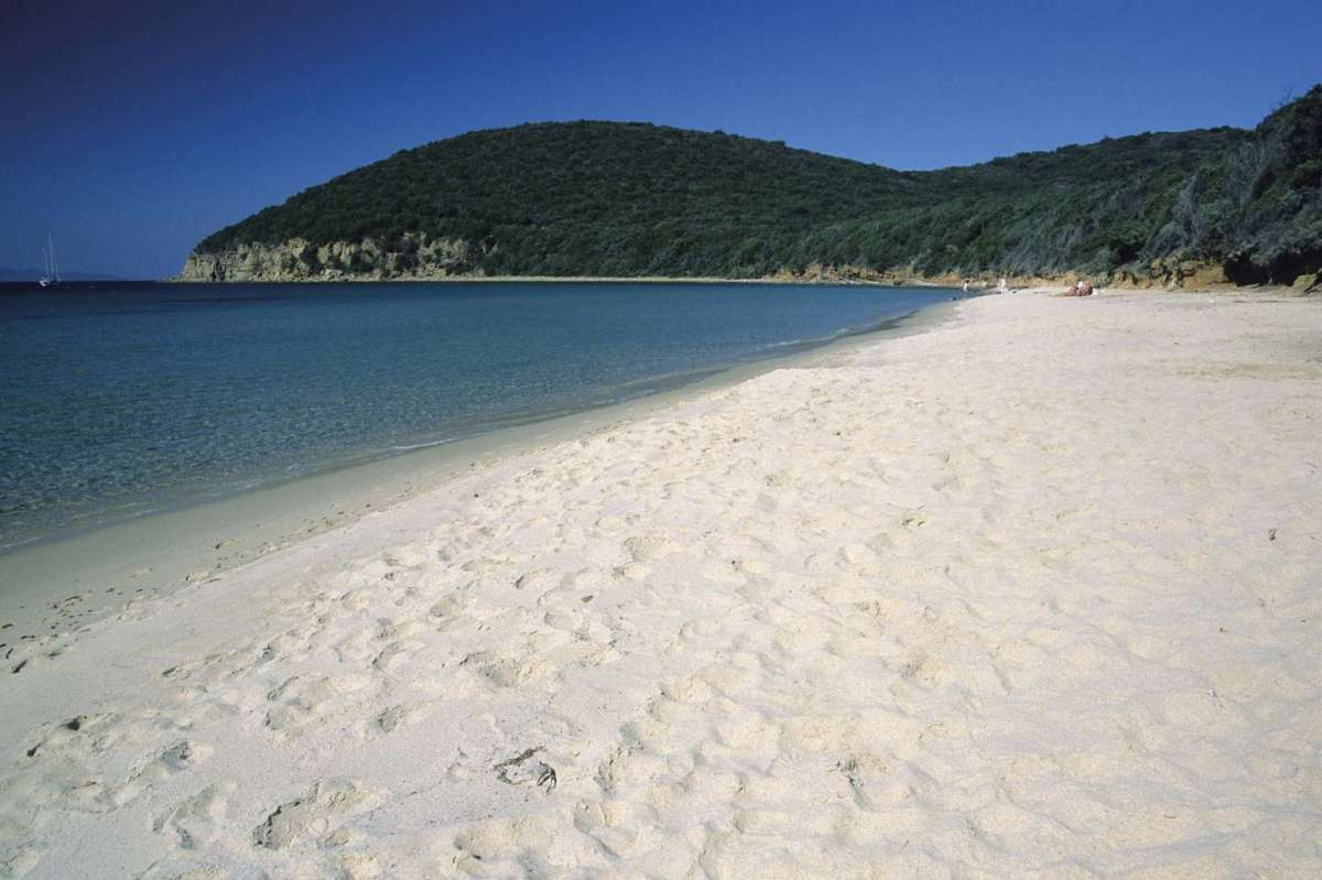 Le pi belle spiagge della Toscana dedicate ai tuoi