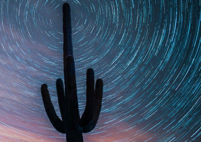 """""""Arizona Nights,"""" by Matthew Chang"""