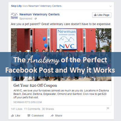 The Anatomy of the Perfect Facebook Ad and Why It Works