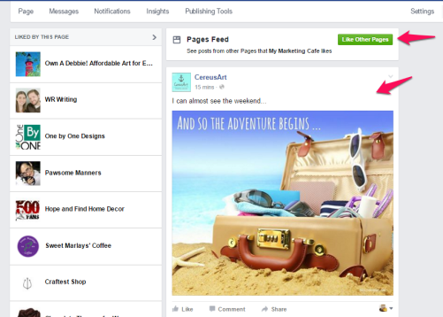 Facebook Business Page Newsfeed