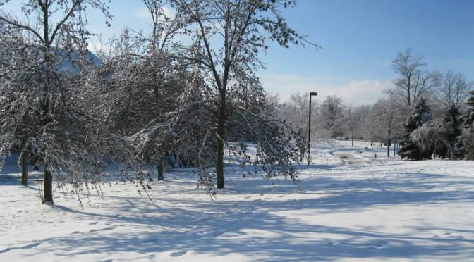 Mississauga has Winter Fun for Everyone