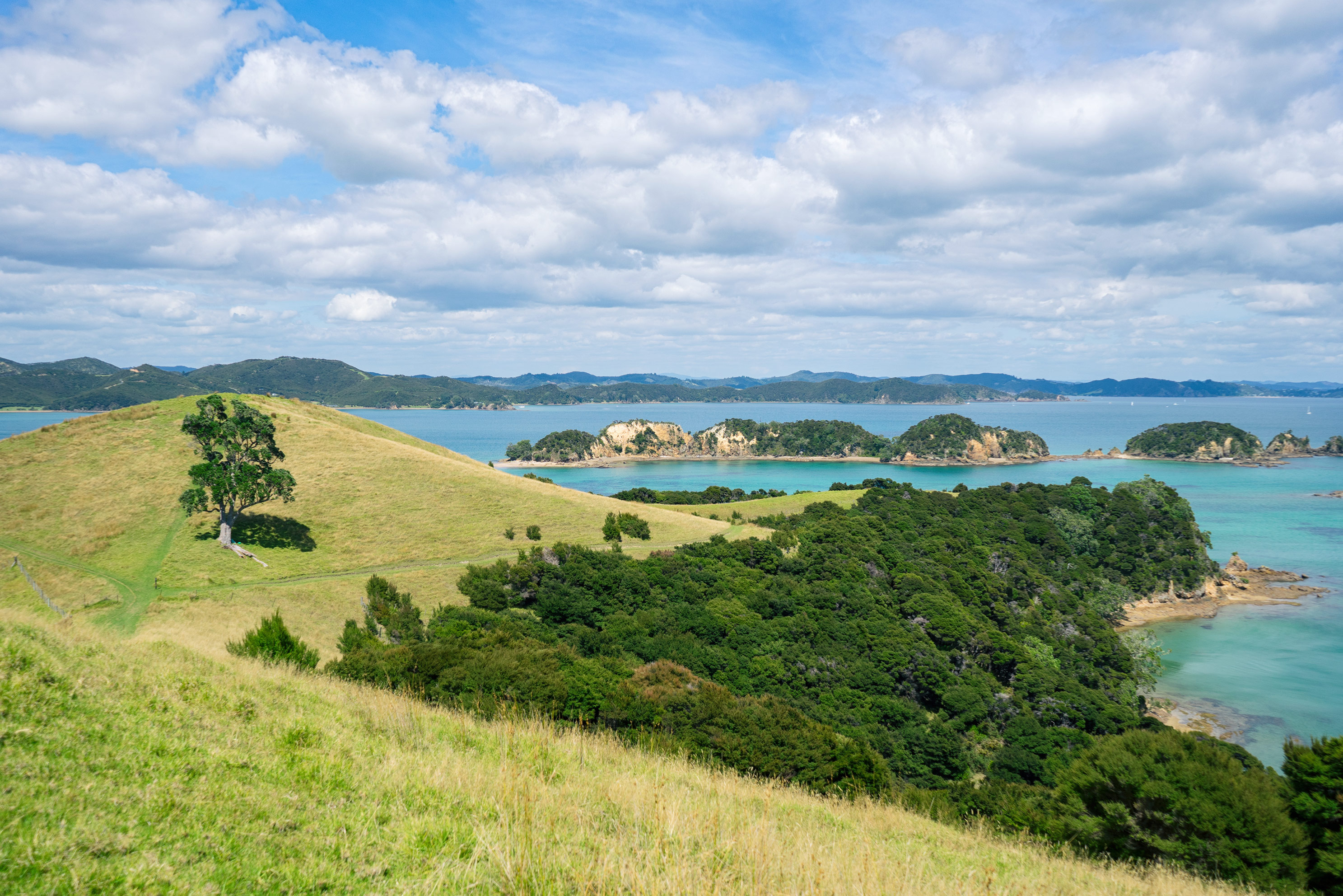 Bay of Islands Urupukapuka View