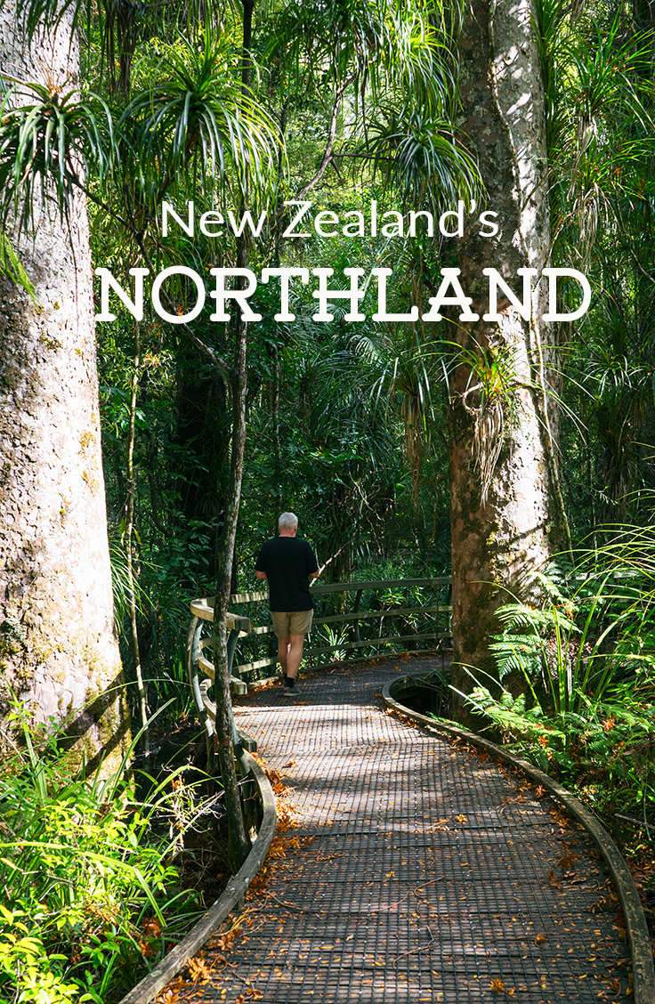 New Zealand Northland Pinterest Card