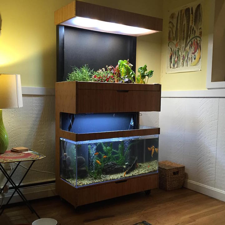 HiTech Indoor Garden Uses Aquaponics to Grow a Salad a Day