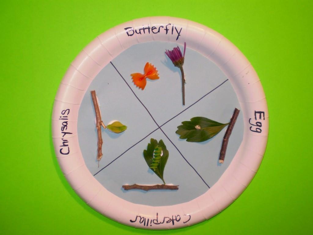 25 Bug Activities For Kids