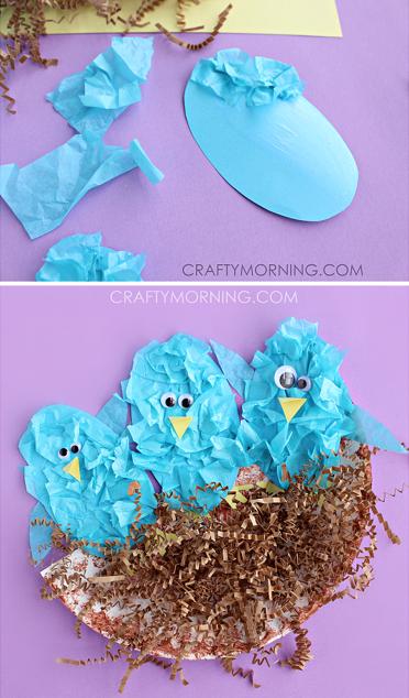 Tissue Paper Plate Bird Craft